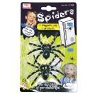 Spinnen mit Magnet und Sticker
